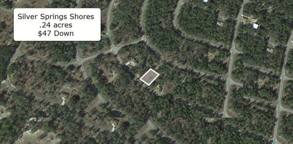 0.24 Acres for Sale in Ocklawaha, FL