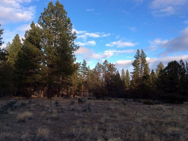3.42 Acres for Sale in Beatty, OR