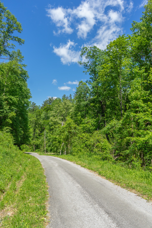 4.78 Acres for Sale in Tellico Plains, TN