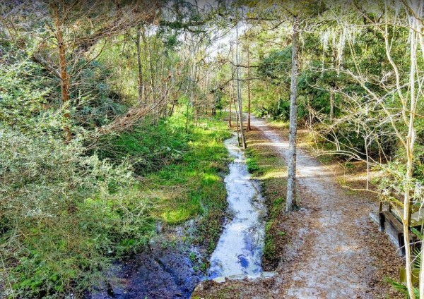 5.22 Acres for Sale in Satsuma, FL