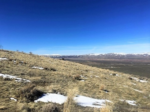 1.13 Acres for Sale in Elko, NV