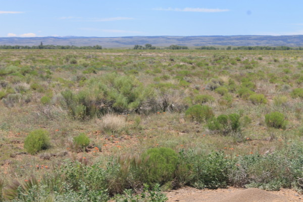 80 Acres for Sale in La Jara, CO