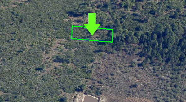 0.31 Acres for Sale in Lake Wales, FL