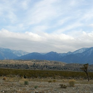 2.5 Acres for Sale in Pearblossom, CA