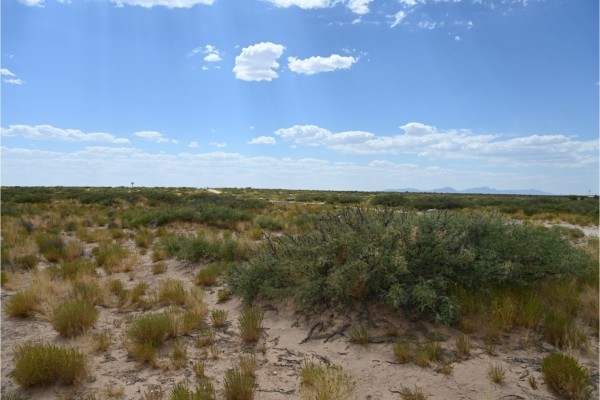 0.5 Acres for Sale in El Paso, TX