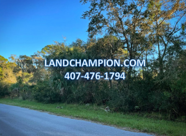 0.2 Acres for Sale in Port Charlotte, FL