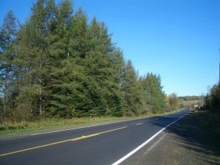 56 Acres for Sale in New Canada, ME