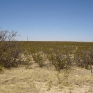 10 Acres for Sale in Dell City, TX