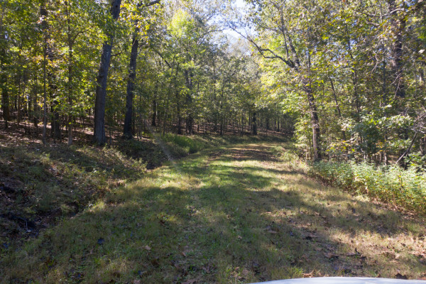 6 Acres for Sale in Edwards, MO