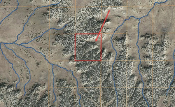 40 Acres for Sale in Model, CO