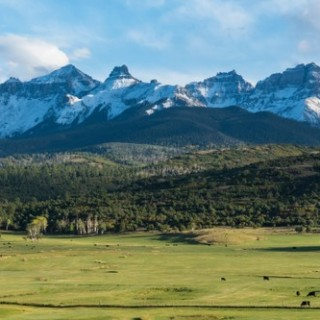 77 Acres for Sale in Model, CO