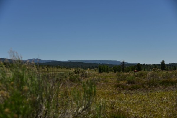 1.5 Acres for Sale in Chama, NM