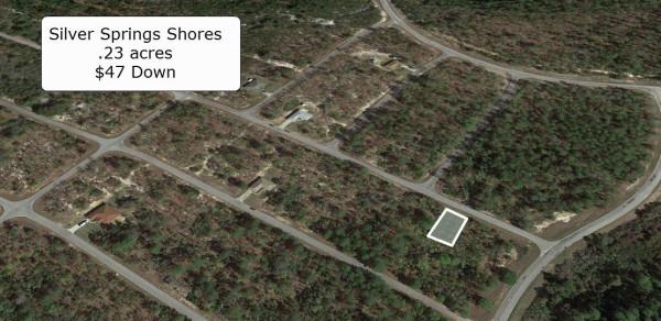 0.23 Acres for Sale in Ocklawaha, FL