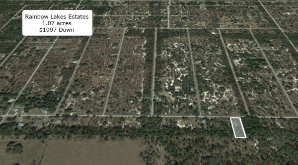 1.07 Acres for Sale in Dunnellon, FL