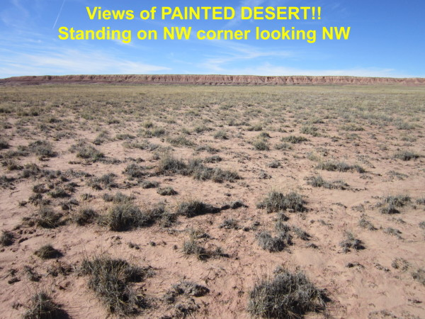 40 Acres for Sale in Petrified Forest National Park, AZ