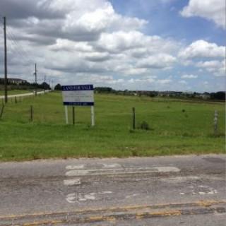12 Acres for Sale in Zephyrhills, FL