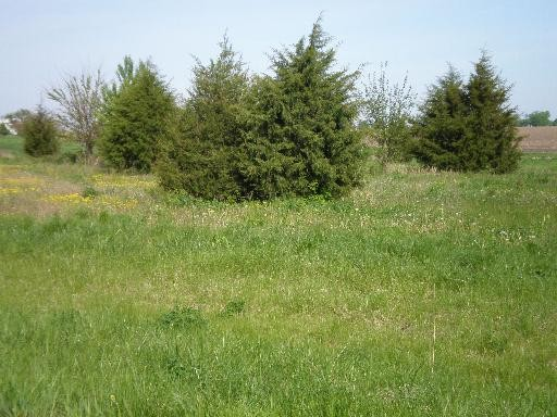 1 Acre for Sale in Ottawa, IL