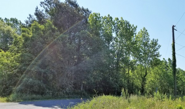 2 Acres for Sale in Cape Charles, VA