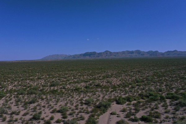 65 Acres for Sale in Marfa, TX