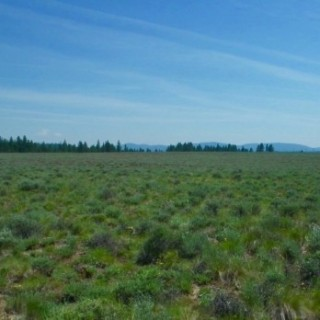 9.88 Acres for Sale in Bly, OR