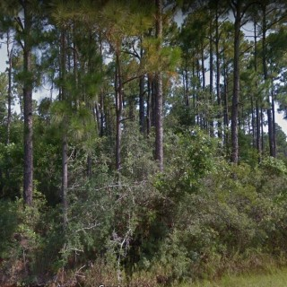 0.55 Acres for Sale in Milton, FL