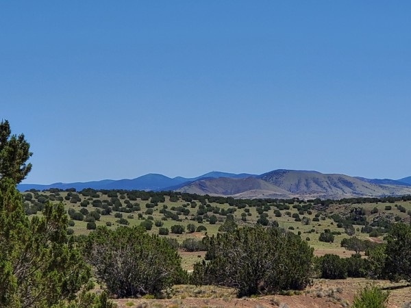14.18 Acres for Sale in Concho, AZ