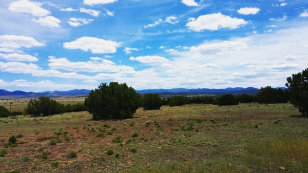 1.06 Acres for Sale in Concho, AZ