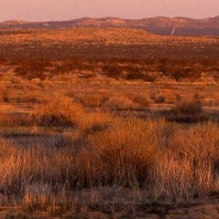 9.61 Acres for Sale in Lancaster, CA