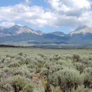 10 Acres for Sale in Blanca, CO