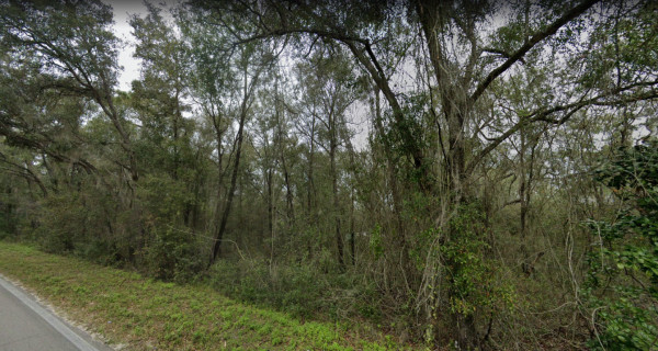 0.21 Acres for Sale in Interlachen, FL