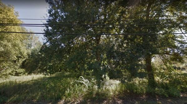 3 Lots for Sale in Live Oak, FL