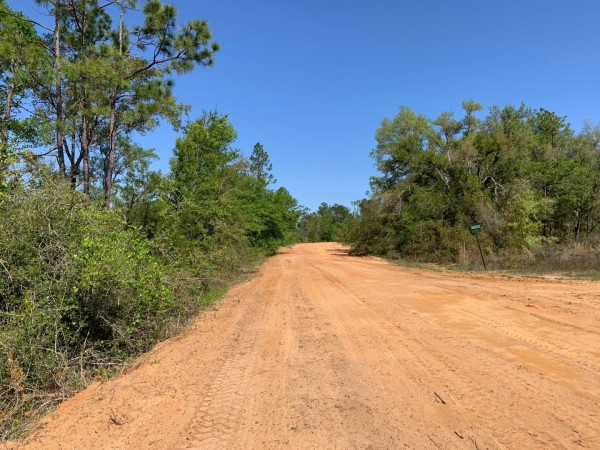 1.13 Acres for Sale in Marianna, FL