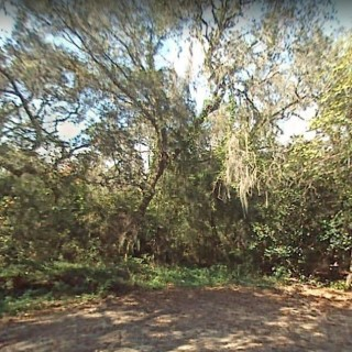 0.31 Acres for Sale in Gainesville, FL