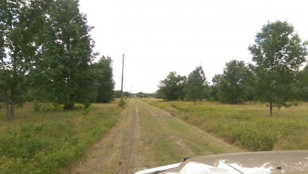 2 Lots for Sale in Eustace, TX