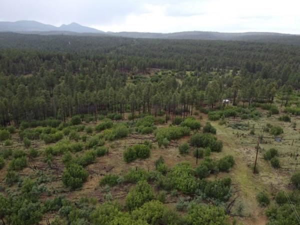 0.52 Acres for Sale in Estancia, NM
