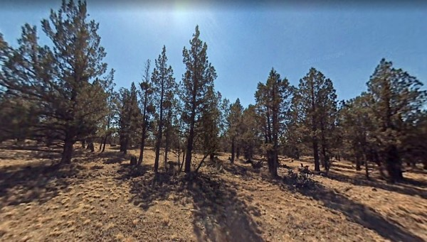 1.77 Acres for Sale in Alturas, CA