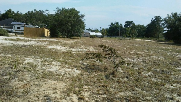 0.35 Acres for Sale in Belleview, FL