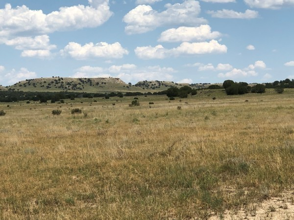 41.2 Acres for Sale in Model, CO