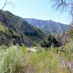 0.47 Acres for Sale in Tujunga, CA