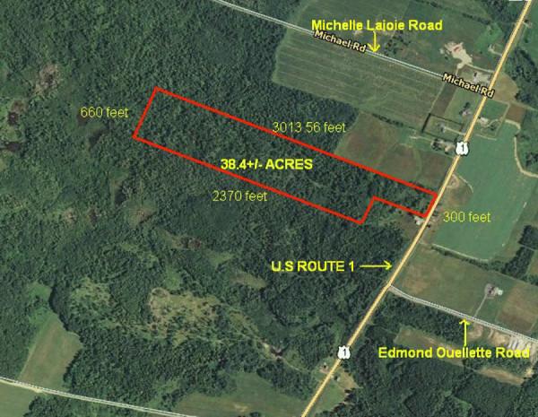 38.4 Acres for Sale in Cyr Plantation, ME