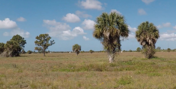 0.25 Acres for Sale in Placida, FL