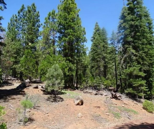 1.46 Acres for Sale in Alturas, CA