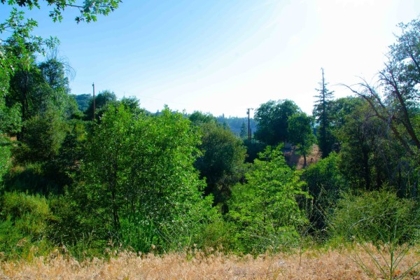 0.01 Acres for Sale in Lake Arrowhead, CA