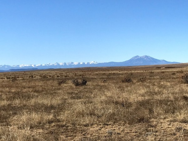 36.72 Acres for Sale in Model, CO