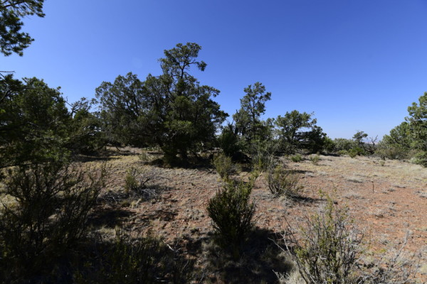 5.21 Acres for Sale in Seligman, AZ