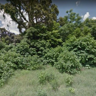 0.17 Acres for Sale in New Port Richey, FL