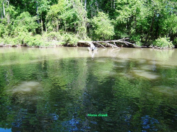 0.35 Acres for Sale in Savannah, TN