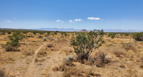 168.86 Acres for Sale in Edwards, CA