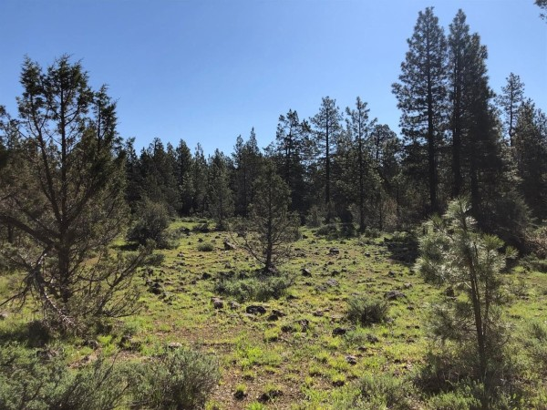 20.2 Acres for Sale in Beatty, OR