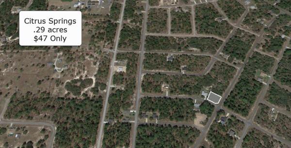 0.29 Acres for Sale in Citrus Springs, FL